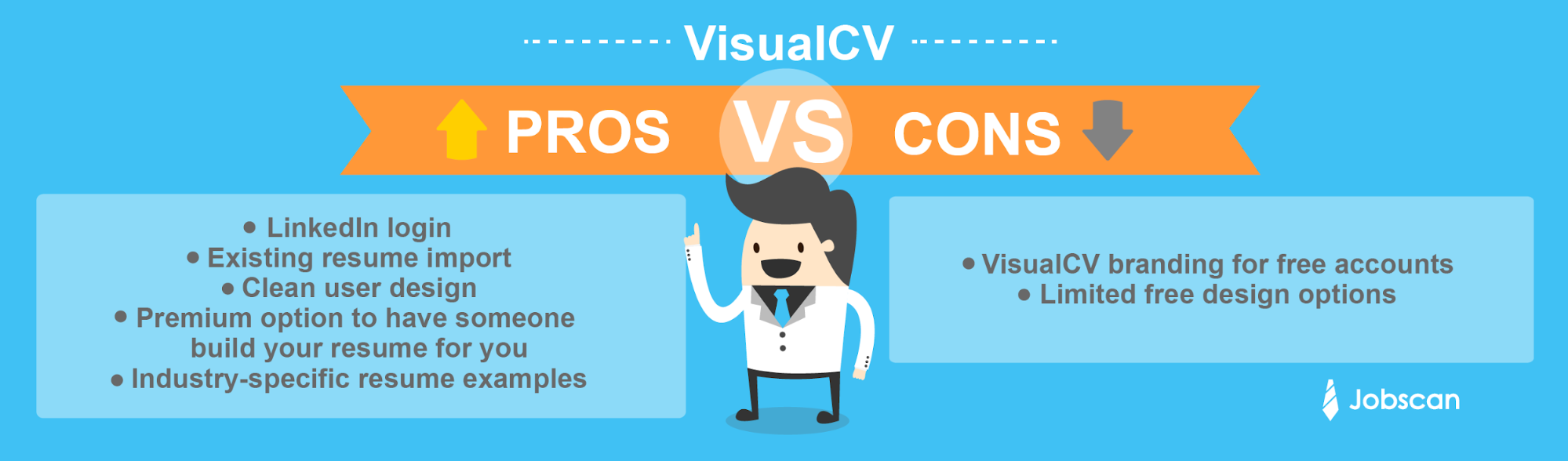 visual cv pro con - Livecareer My Perfect Resume